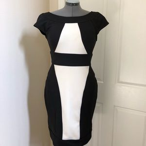 MAGGY LONDON Black and Cream Dress